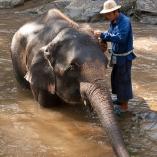 2012_tajlandia_ceprowsko_03