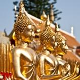 2012_tajlandia_ceprowsko_13
