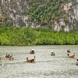 2012_tajlandia_phang_nga_10