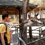 2012_tajlandia_zoo_02