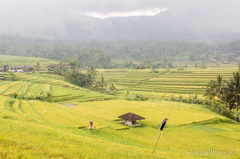 2013_indonezja_bali_roadtrip2_15