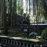2013_indonezja_ubud_03