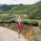 2013_malezja_cameron_highlands_07