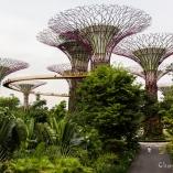 2013_singapur_18