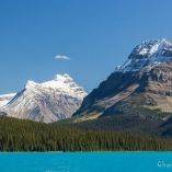 2014_kanada_icefield_12