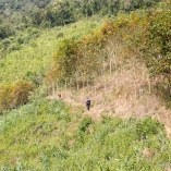 2014_laos_trekking_04