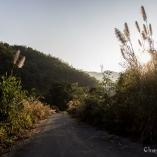 2014_tajlandia_birma_09