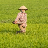 2014_wietnam_hoi_an_14