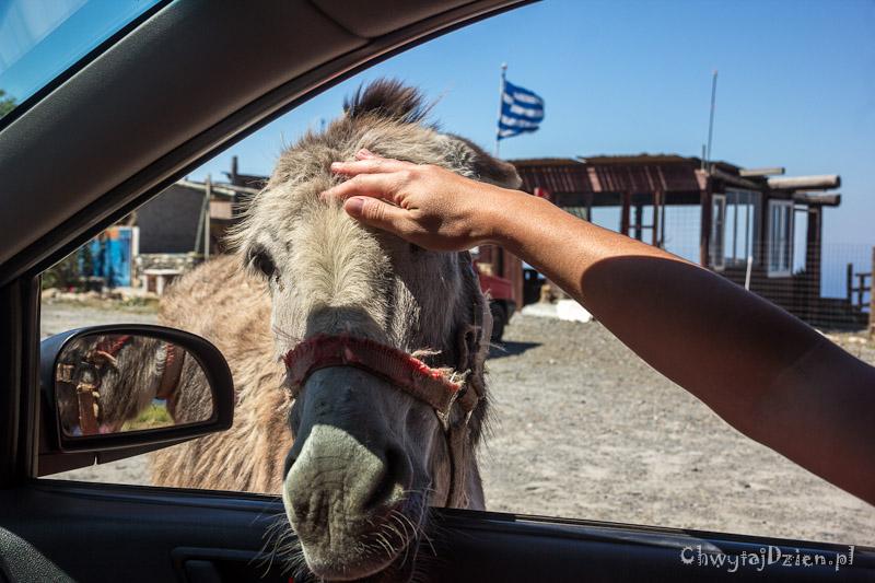 2015_grecja_kreta_na_wlasna_reke_07