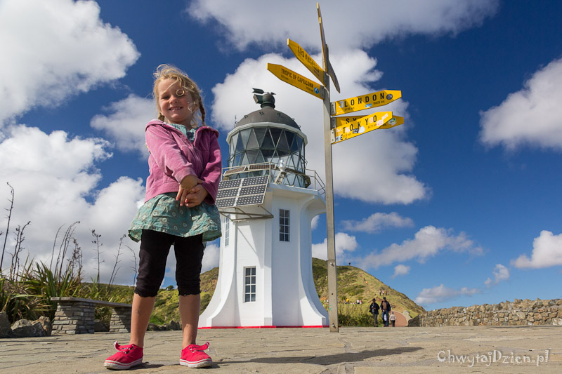 2014_nz_far_north_02