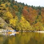 Spacerem ze Szczawnicy do Leśnicy